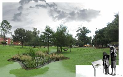Acadian Rain Gardens Update #1